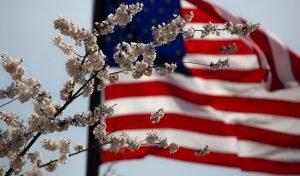 Honoring Our Veterans @ Elmwood Hall Danbury Senior Center   Danbury   Connecticut   United States