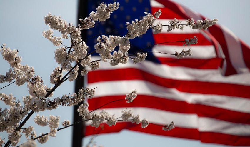 veterans' day danbury ct